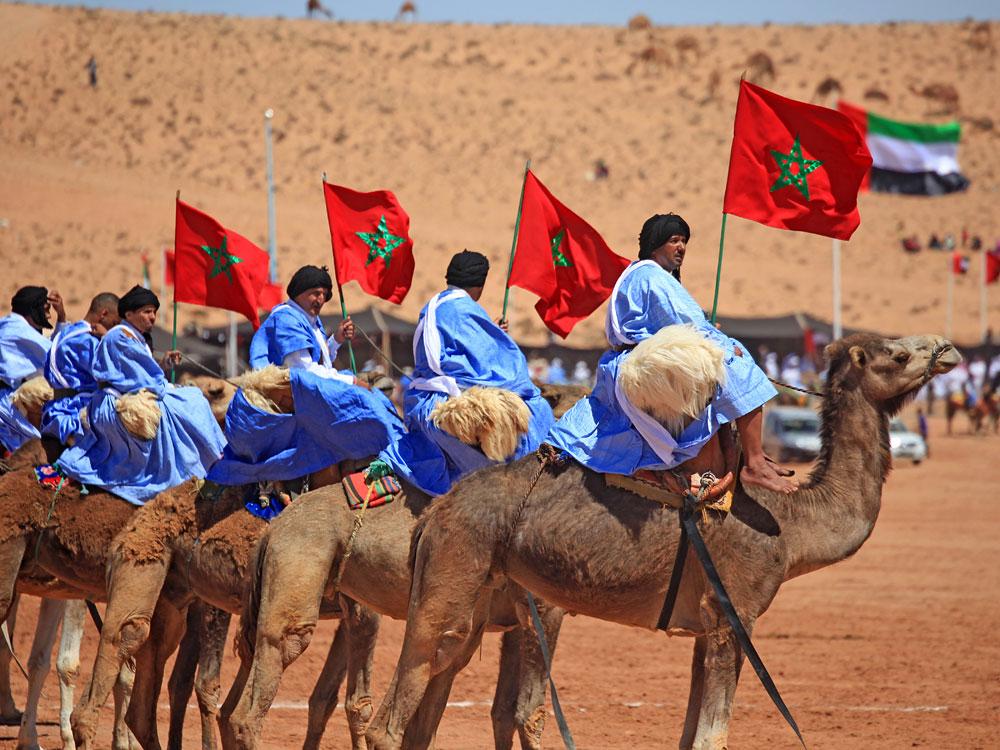 camel-ride-morocco-agadir-marrakech1545331194