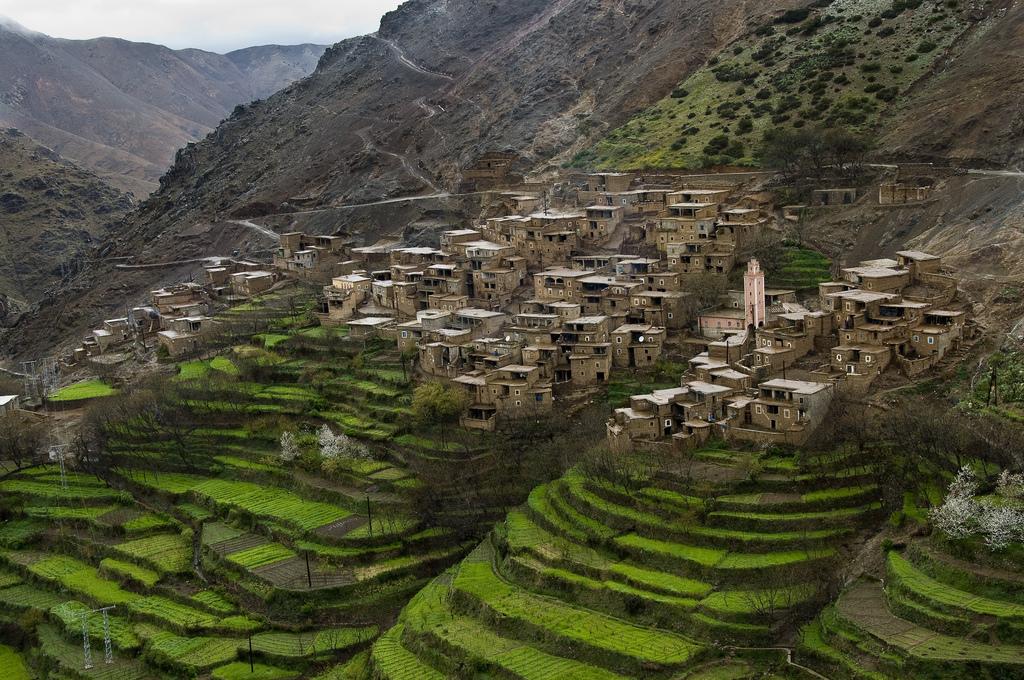 morocco-azrou-greenearth1532074457