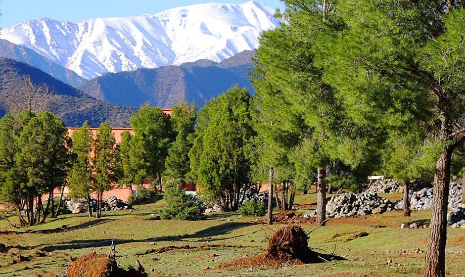 morocco-azrou-sea1532074461