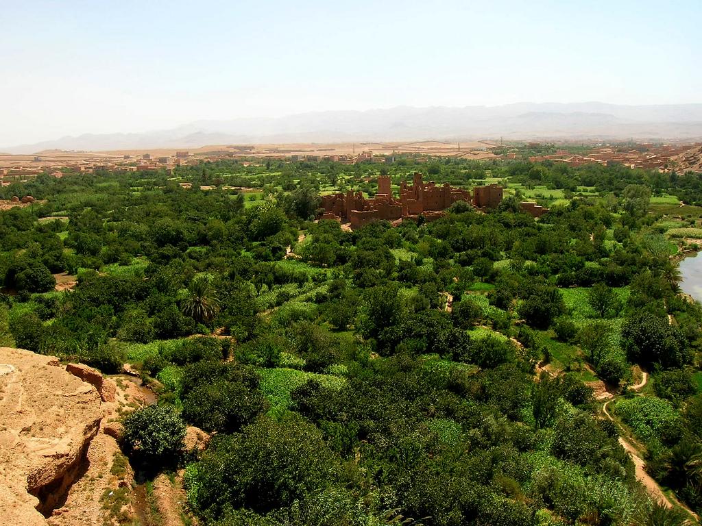 morocco-el-kelaa-mgouna-mountain1532074765