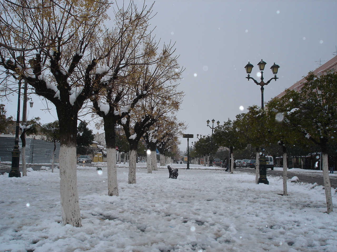 morocco-ifrane-snow1532074723