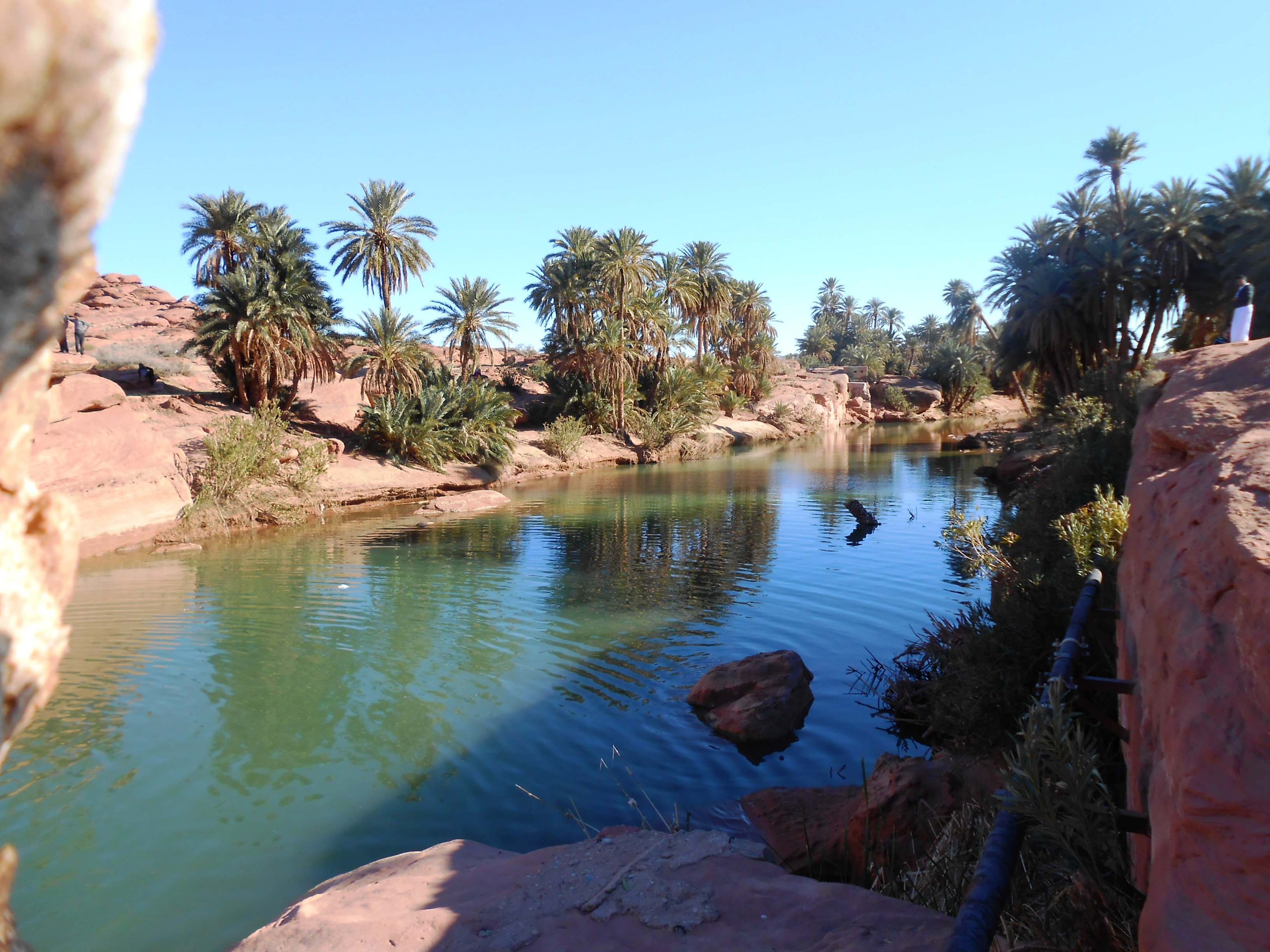 morocco-taroudant-oasis-tiout1532101683.JPG