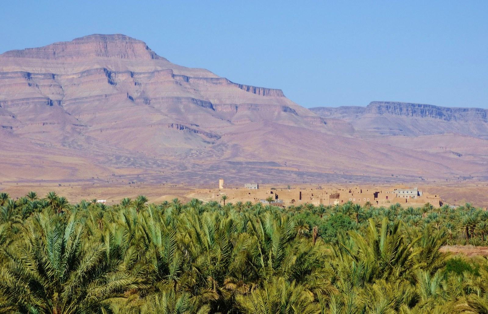 morocco-zagoura-palmerie-draa1532075257.JPG